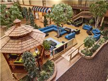LivINN Hotel Minneapolis North/Fridley Amenities - LivINN Fridley Garden Court Atrium